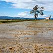 UNESCO declares Terres de l'Ebre a new Biosphere Reserve