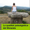 Research Project 'Landscape Quality in Moian�s' Wins 2010 Young Researcher's Prize