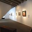 Landscape Museum Takes Shape